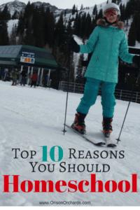 homeschool, homeschooling, top ten reasons