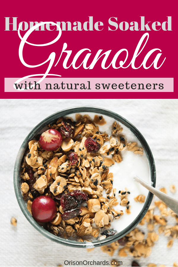 Soaked Granola with Natural Sweeteners