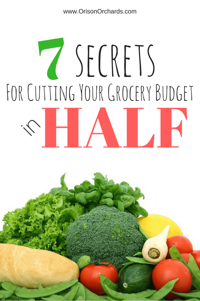 7  Secrets for Saving Money on Groceries
