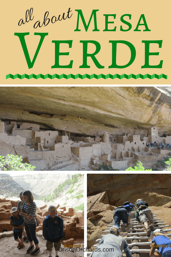 All About Mesa Verde