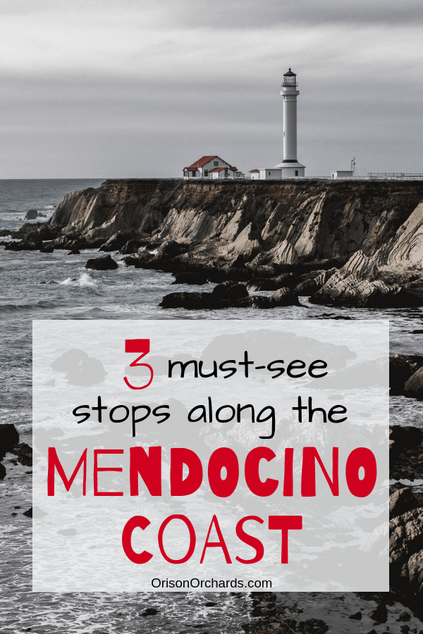 3 Must-See Stops Along the Mendocino Coast