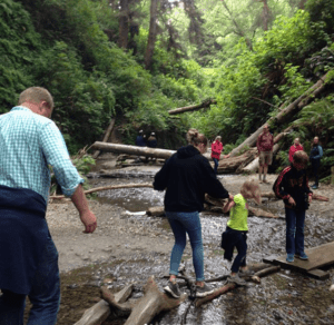 Fern Canyon; Redwood National Park; Pacific Northwest road trip itinerary