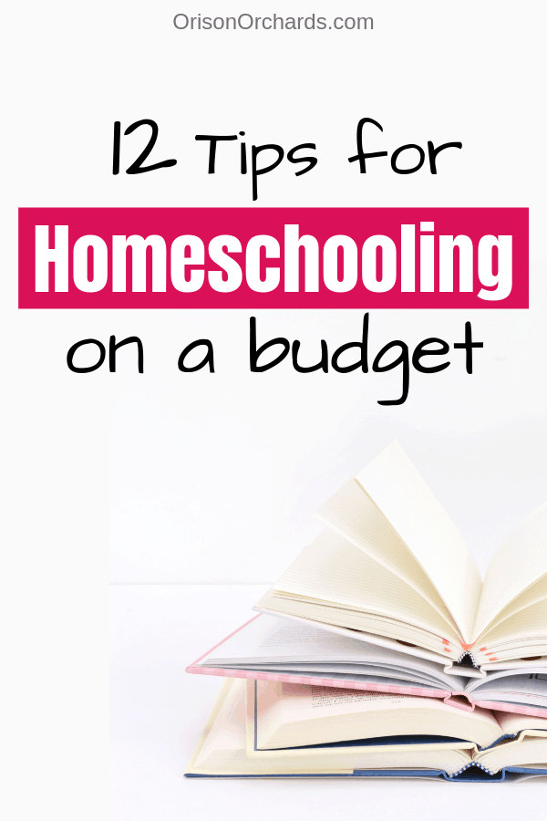 12 Tips for Homeschooling on a Budget