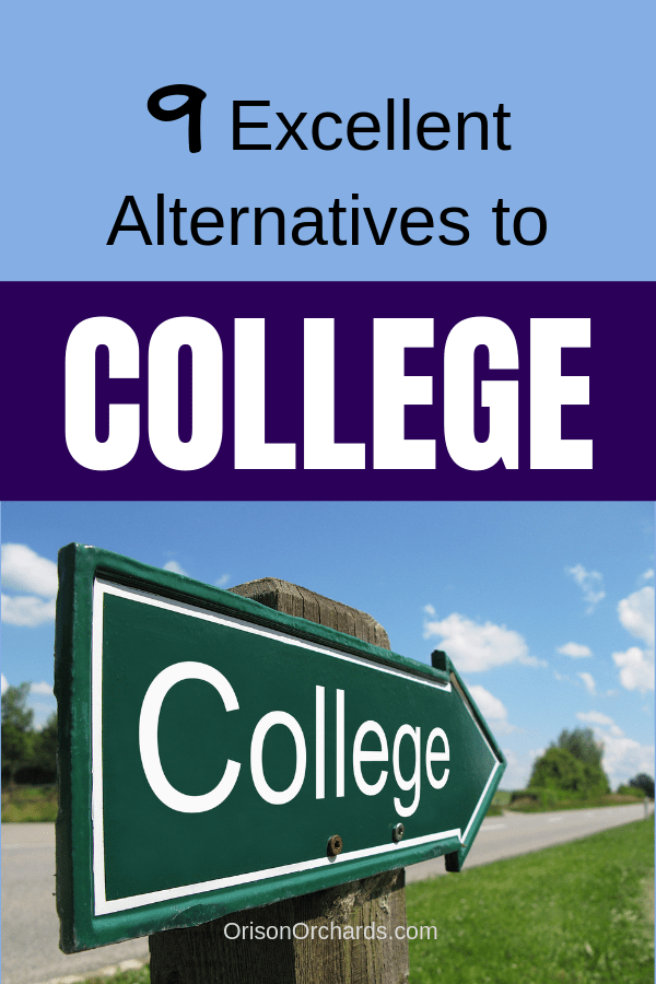 9 Excellent Alternatives to College