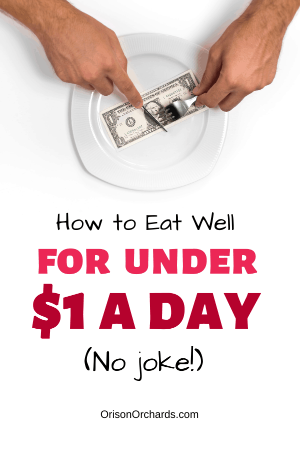 How to Eat Cheap  (Under $1 a Day – no joke!)