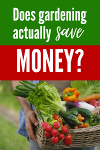 Does gardening save money?