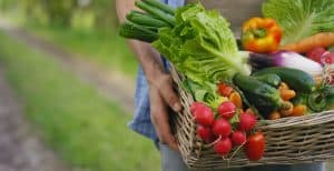 High Yield Crops for Small Gardens