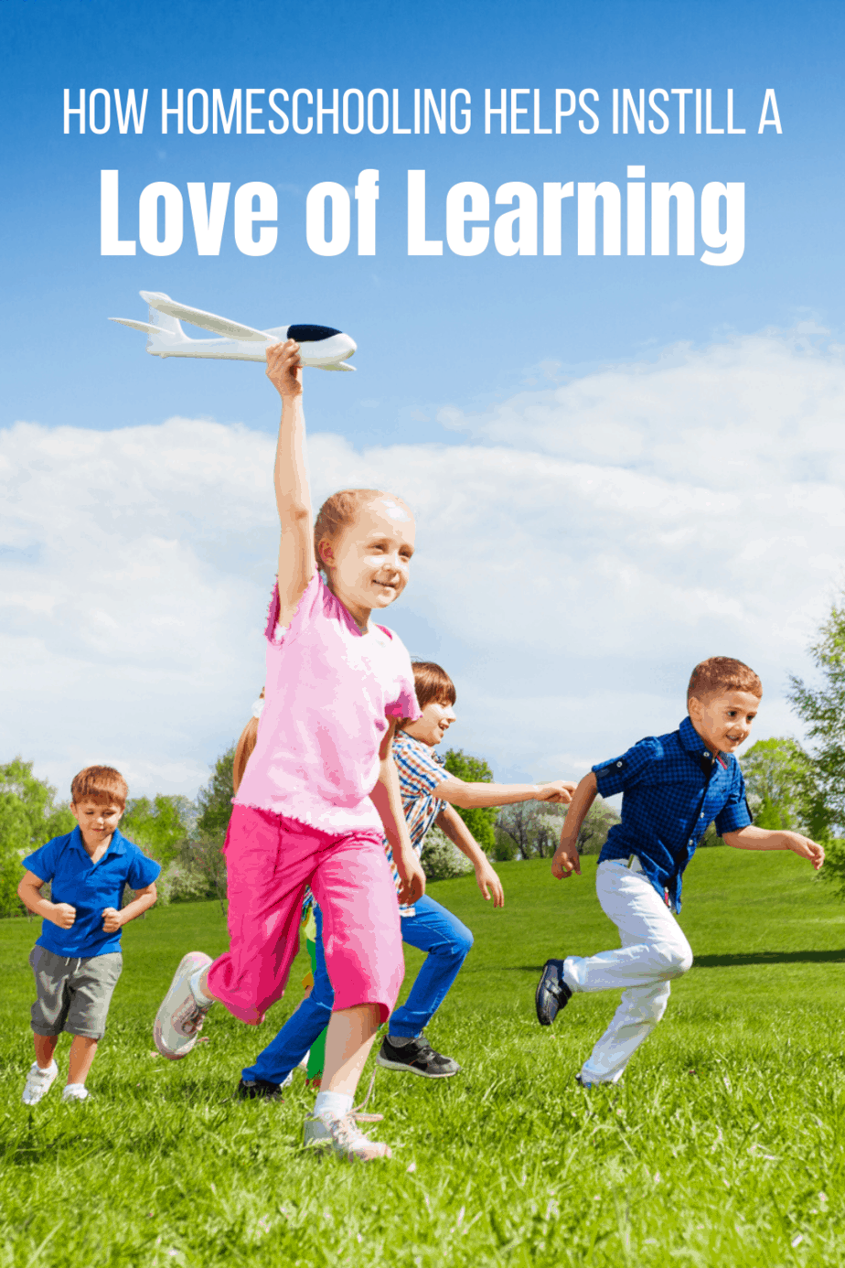 How Homeschooling Helps Instill a Love of Learning